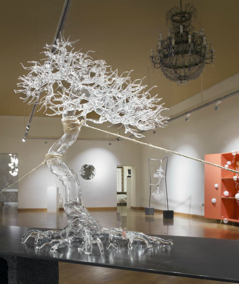 Maggiore Design GAM Simone Crestani bonsai