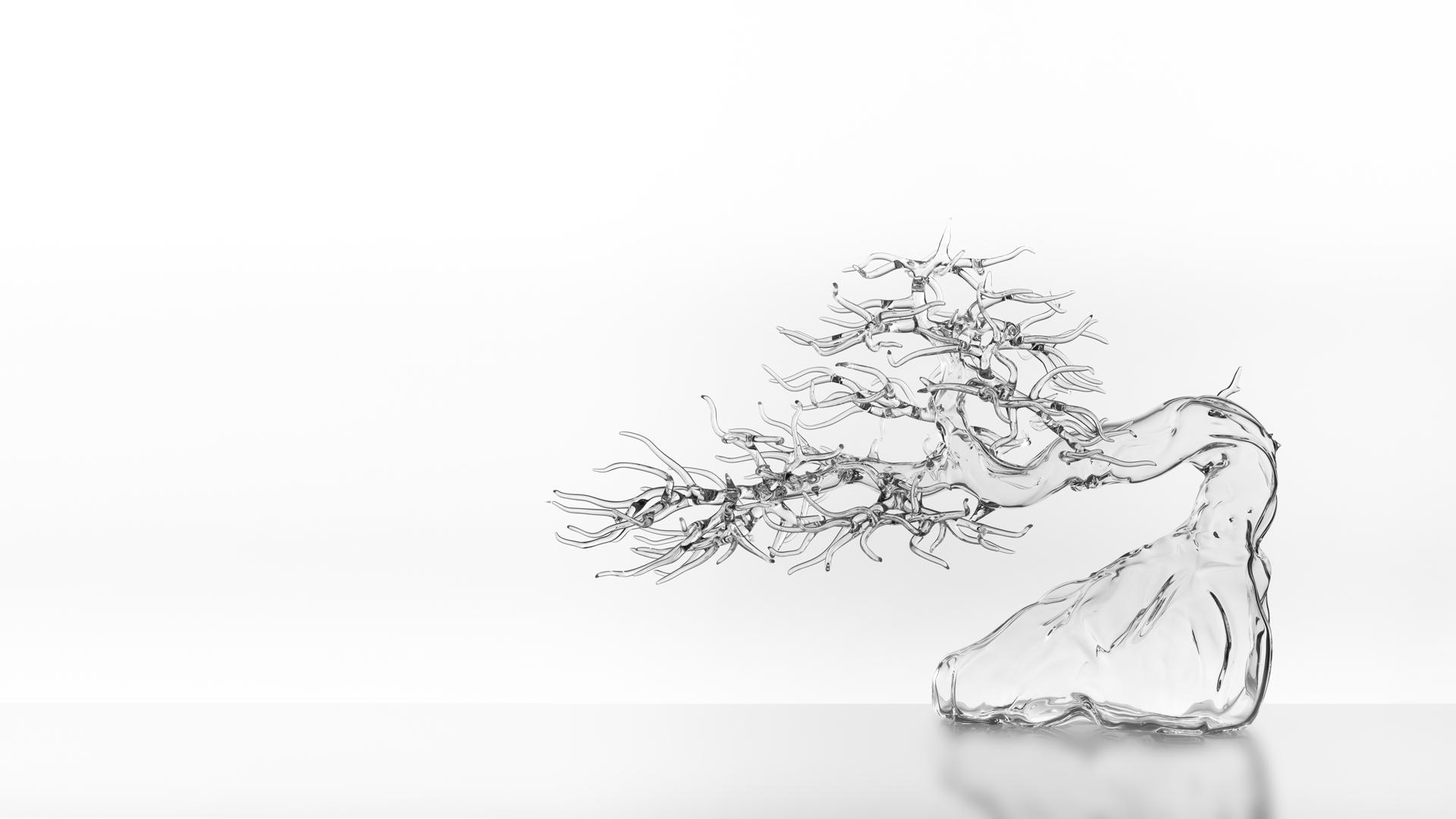 Glass & Blossom Bonsai