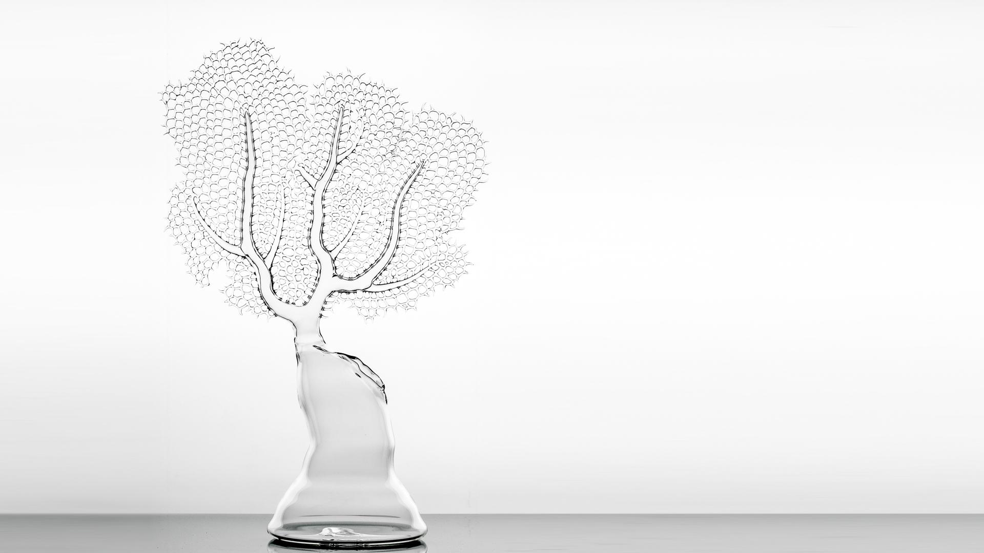 Glass Corals